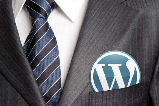 wordpress-programming